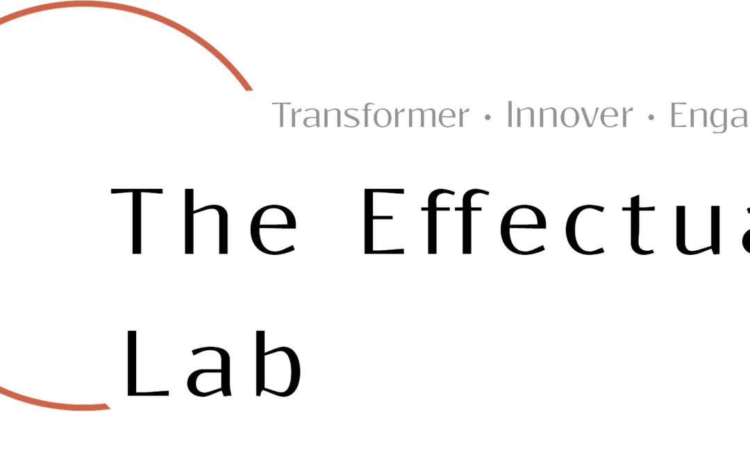 Effectual Lab